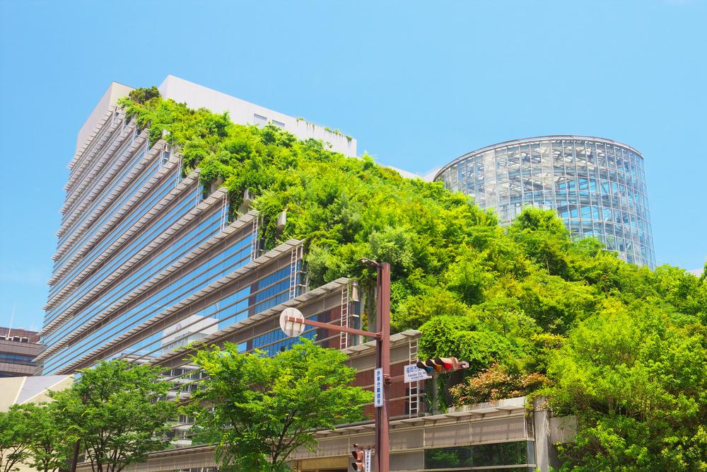 végétalisation et confort urbain